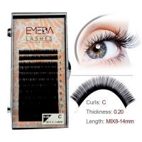 Best Single eyelash extensions wholesaler JH59-PY1