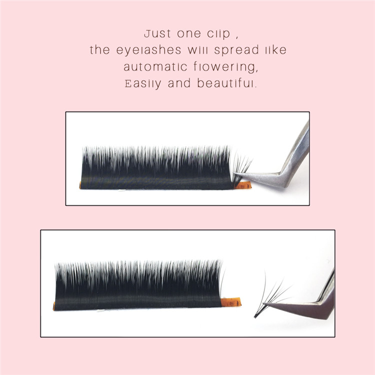 Automatic flower lash.jpg